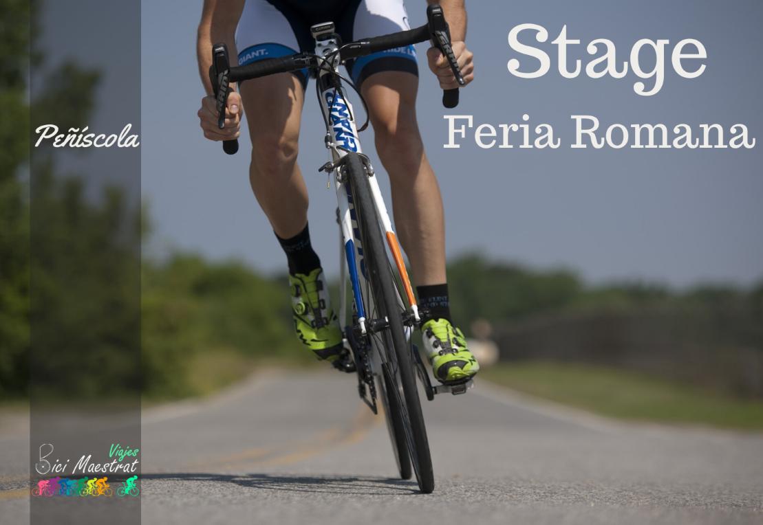 stage_feria_romana_ (Personalizado)