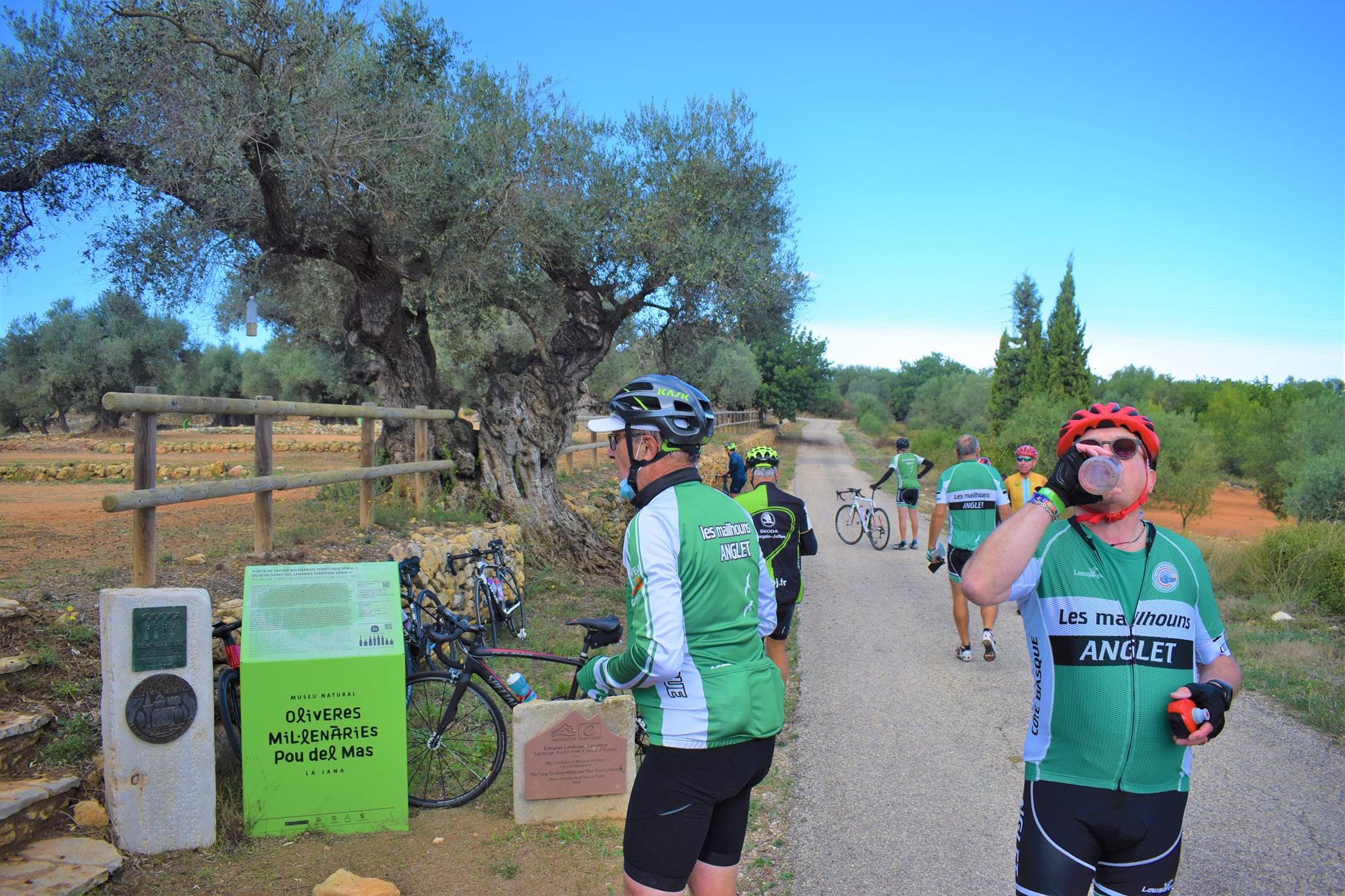 viajes_bici_maestrat_stages_cyclistes_espagne_olivieres